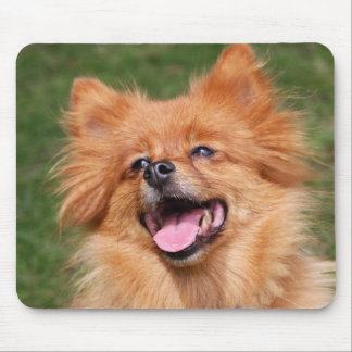 Pomeranian happy dog mousepad, gift idea mouse mat