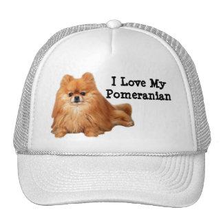 Pomeranian Hat