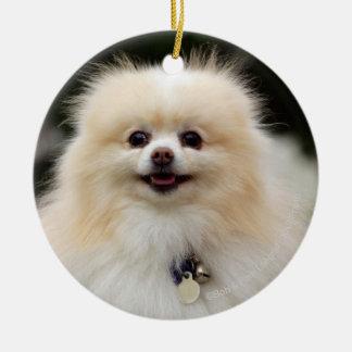 Pomeranian Headshot 1 Christmas Ornament