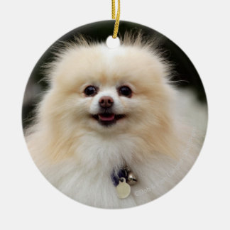 Pomeranian Headshot 1 Round Ceramic Decoration