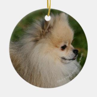 Pomeranian Headshot 2 Christmas Ornament