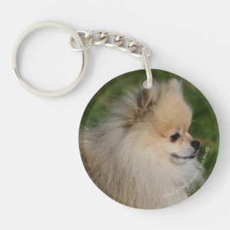 Pomeranian Headshot 2 Key Ring