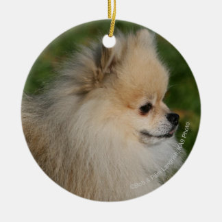 Pomeranian Headshot 2 Round Ceramic Decoration