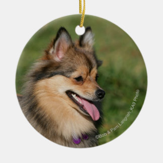 Pomeranian Headshot Panting Round Ceramic Decoration