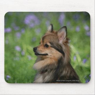 Pomeranian Headshot Sitting Mouse Pad