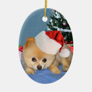 Pomeranian in Santa Hat Ornament