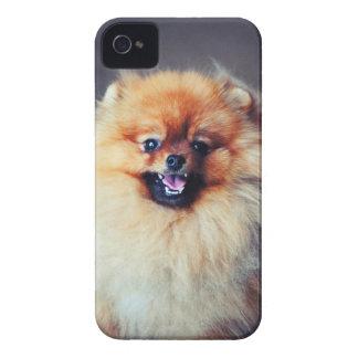 Pomeranian iPhone 4 Case Mate ID Case