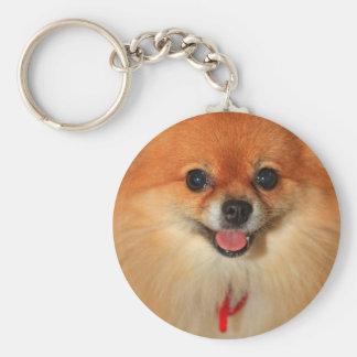 Pomeranian Key Chains