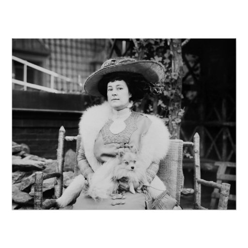 Pomeranian Lady, early 1900s Poster