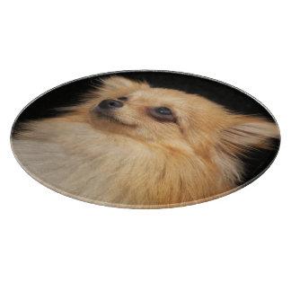 Pomeranian looking up on black cutting board