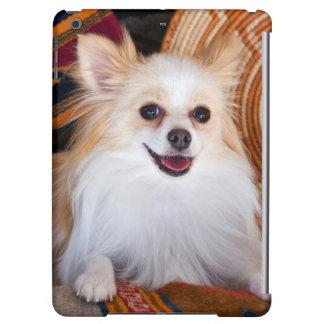 Pomeranian Lying On Blankets