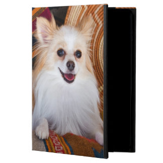 Pomeranian Lying On Blankets Cover For iPad Air