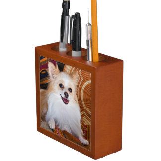 Pomeranian Lying On Blankets Desk Organiser