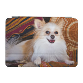 Pomeranian Lying On Blankets iPad Mini Cover