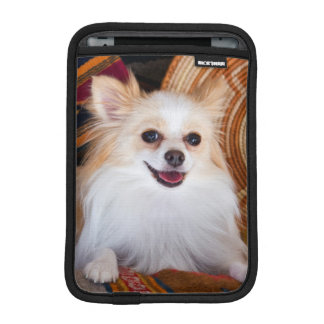 Pomeranian Lying On Blankets iPad Mini Sleeve