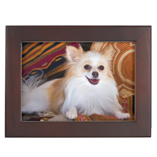 Pomeranian Lying On Blankets Keepsake Box