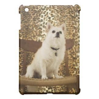 Pomeranian mix iPad mini covers
