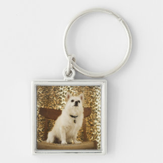 Pomeranian mix Silver-Colored square key ring