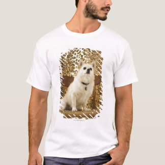 Pomeranian mix T-Shirt