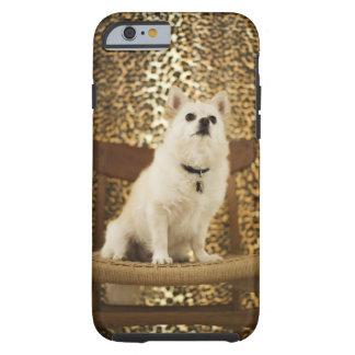Pomeranian mix tough iPhone 6 case