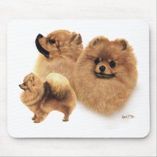 Pomeranian Mouse Mat