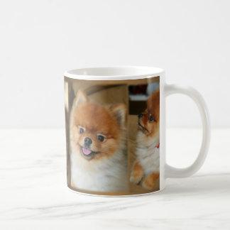 Pomeranian Mug