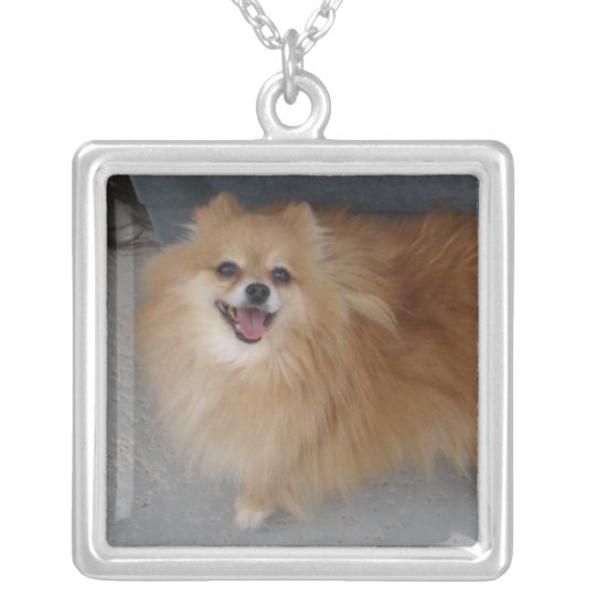 Pomeranian Necklace