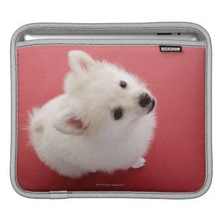 Pomeranian on the Red Carpet iPad Sleeve