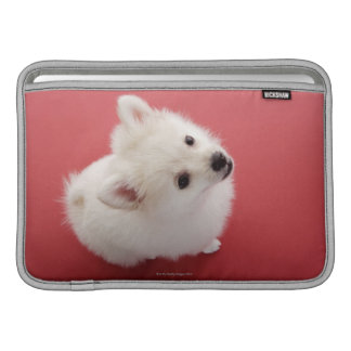 Pomeranian on the Red Carpet Sleeves For MacBook Air