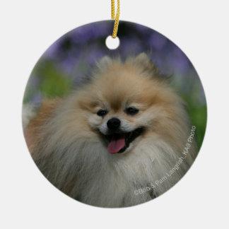 Pomeranian Panting Christmas Ornament