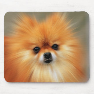 Pomeranian Photography Zoom Speed Art Portrait Mouse Mat