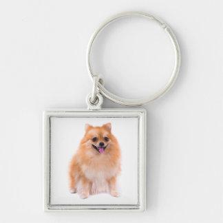 Pomeranian Pom Pom Puppy Dog Keychain