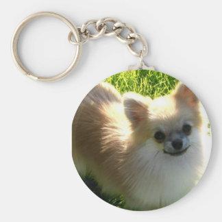 Pomeranian Puppies Keychain