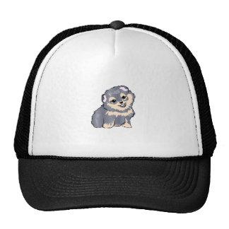 POMERANIAN PUPPY MESH HAT