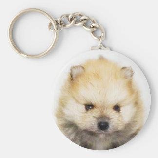 Pomeranian puppy keychain