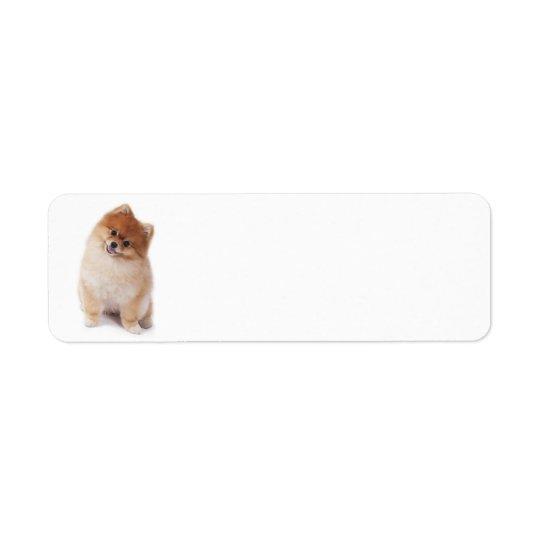 Pomeranian Return Address Label