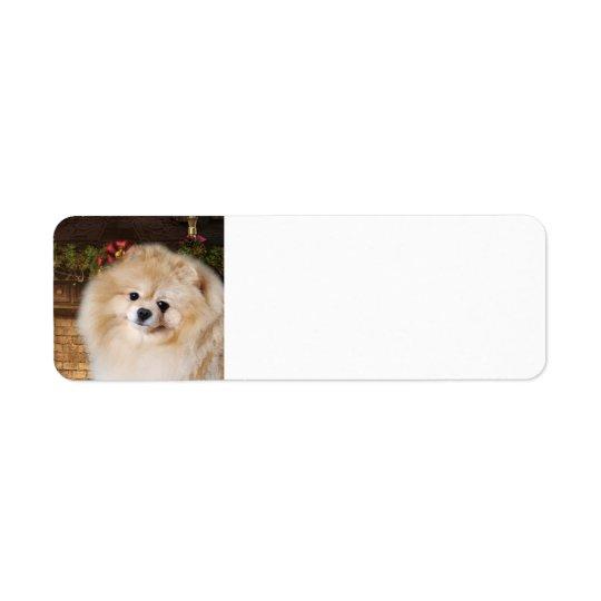 Pomeranian Return Address Labels