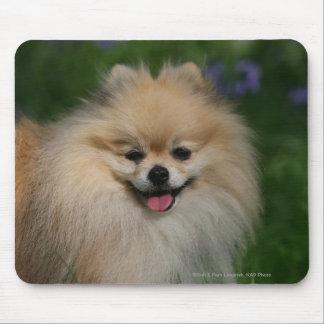 Pomeranian Smiling Mouse Mat