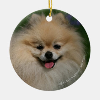 Pomeranian Smiling Round Ceramic Decoration