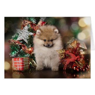 Pomeranian Spitz, Christmas Puppy Greeting Card