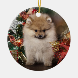 Pomeranian Spitz, Christmas Puppy Round Ceramic Decoration