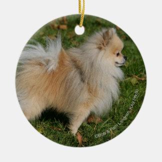 Pomeranian Standing Christmas Ornament
