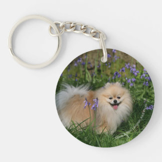 Pomeranian Standing Looking at Camera Double-Sided Round Acrylic Key Ring