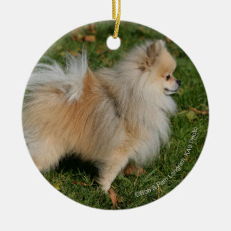 Pomeranian Standing Round Ceramic Decoration