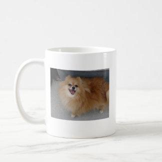 Pomeranian - Sushi Coffee Mug