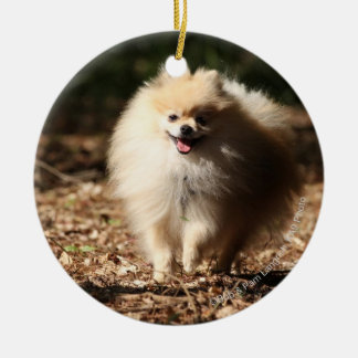 Pomeranian Trotting in the Fallen Leaves Round Ceramic Decoration