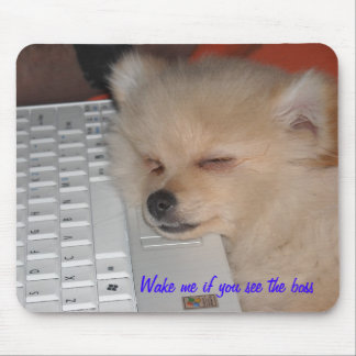 Pomeranian   Wake me if you see the boss Mouse Mat