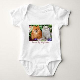 Pomeranians Infant Creeper
