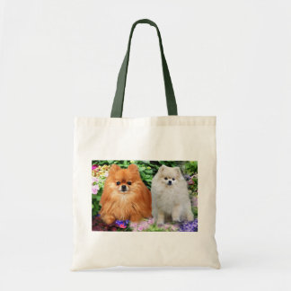 Pomeranians Tote Bag