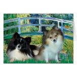 Pomeranians (two) - Bridge Greeting Card
